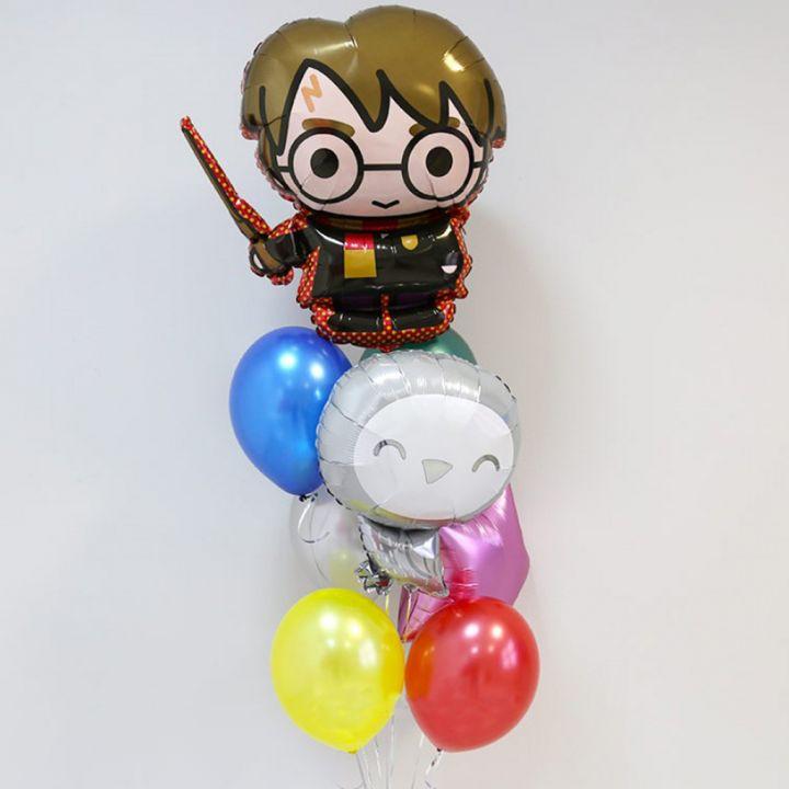 Связка из 8 шаров Гарри Поттер